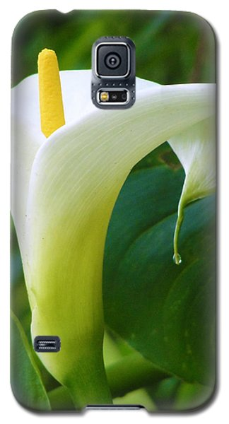Open Your Heart Galaxy S5 Case