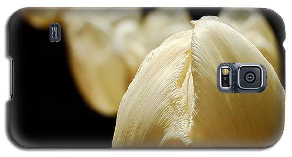 Opening Night - Tulips In The Spotlight Galaxy S5 Case