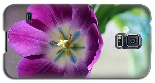Opening Galaxy S5 Case by Silke Brubaker