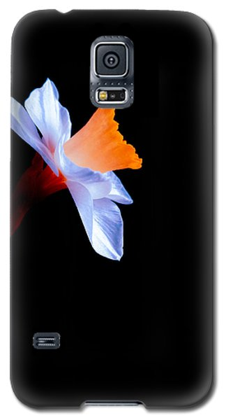 Galaxy S5 Case featuring the photograph Opening To The Light by Julia Wilcox
