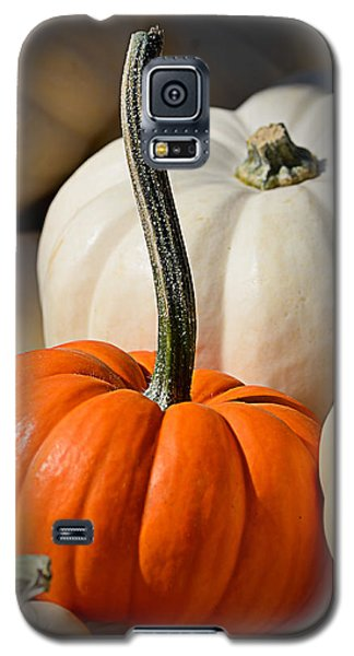 Orange And White Pumpkins Galaxy S5 Case
