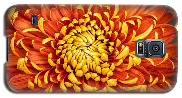 Orange And Yellow Mum Galaxy S5 Case