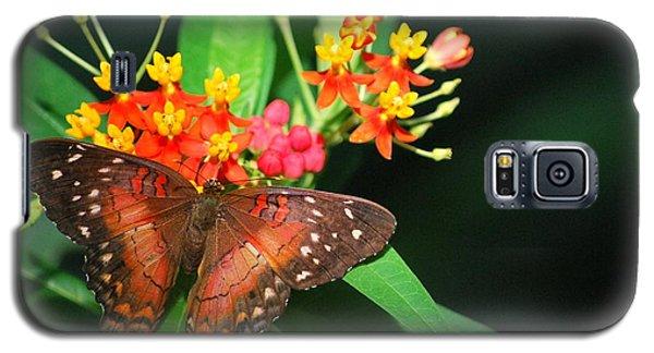 Orange Beauty Galaxy S5 Case