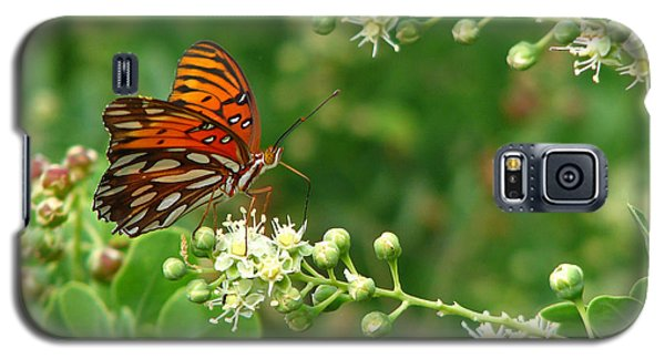 Galaxy S5 Case featuring the photograph Orange Butterfly by Marcia Socolik