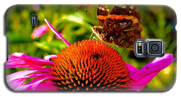 Galaxy S5 Case featuring the photograph Orange Butterfly  by Sarah Mullin