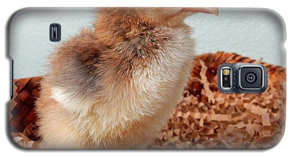 Orange Chick Galaxy S5 Case