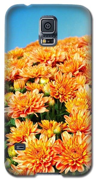 Orange Chyrsanthemum Galaxy S5 Case