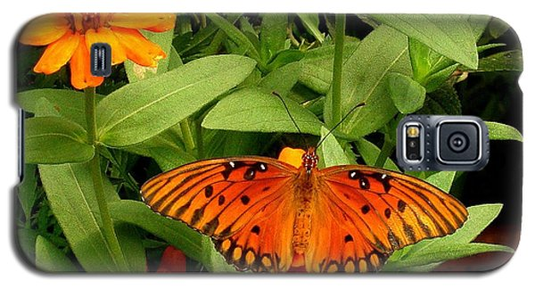 Orange Creatures Galaxy S5 Case