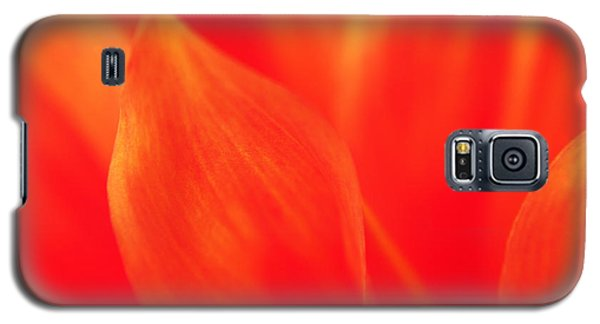 Galaxy S5 Case featuring the photograph Orange Dahlia Abstract by Olivia Hardwicke
