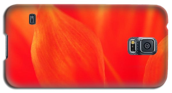 Orange Dahlia Abstract Galaxy S5 Case