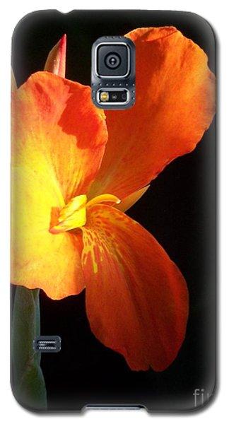 Orange Flower Canna Galaxy S5 Case by Eric  Schiabor