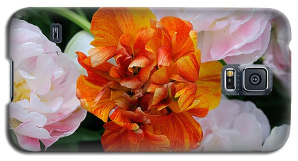 Orange Flower Galaxy S5 Case by Haleh Mahbod
