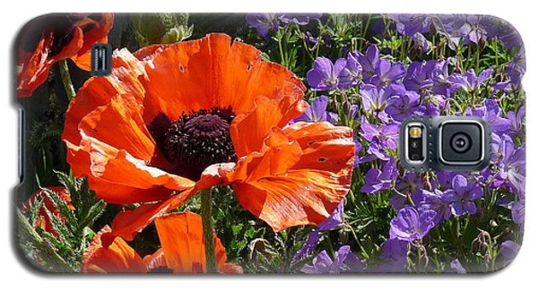 Galaxy S5 Case featuring the photograph Orange Flowers by Alan Socolik