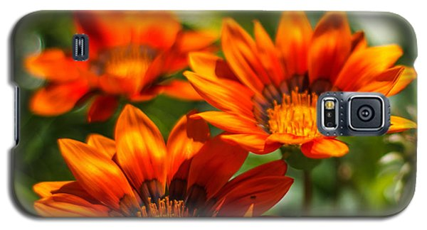Galaxy S5 Case featuring the photograph Orange Flowers by Jane Luxton