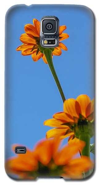 Galaxy S5 Case featuring the photograph Orange Flowers On Blue Sky by Debbie Karnes