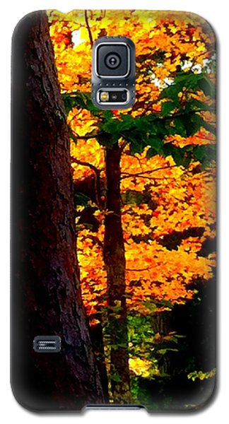 Galaxy S5 Case featuring the photograph Orange Foliage by Denyse Duhaime