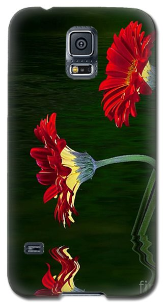 Galaxy S5 Case featuring the photograph Orange Gerber by Shirley Mangini