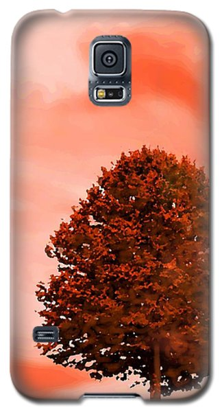 Galaxy S5 Case featuring the digital art Orange Glow Of Fall by Mary Armstrong