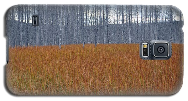 Orange Grasses And Gray Trees In Yellowstone National Park Galaxy S5 Case