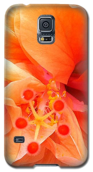 Orange Hibiscus Galaxy S5 Case