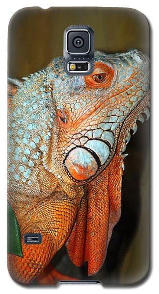 Orange Iguana Galaxy S5 Case by Patrick Witz