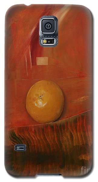 Orange Galaxy S5 Case