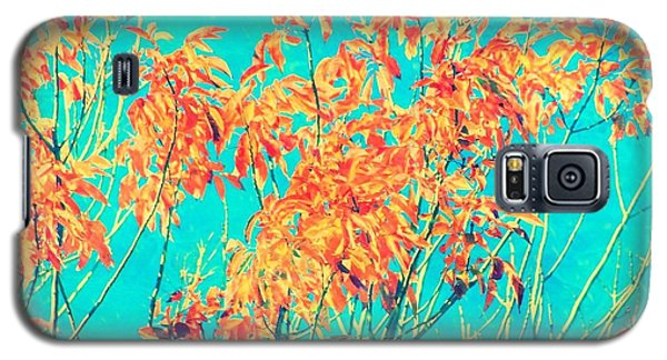 Orange Leaves And Turquoise Sky  Galaxy S5 Case