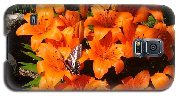 Orange Lilies Galaxy S5 Case