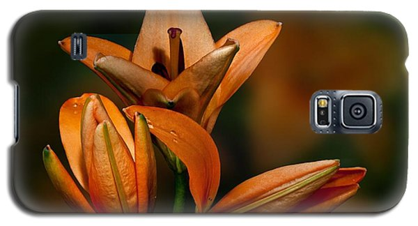 Galaxy S5 Case featuring the photograph Orange Lilies by Shirley Mangini