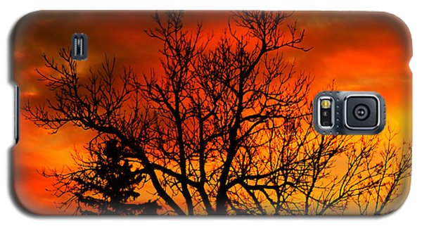 Orange Morning Galaxy S5 Case by Marjorie Imbeau
