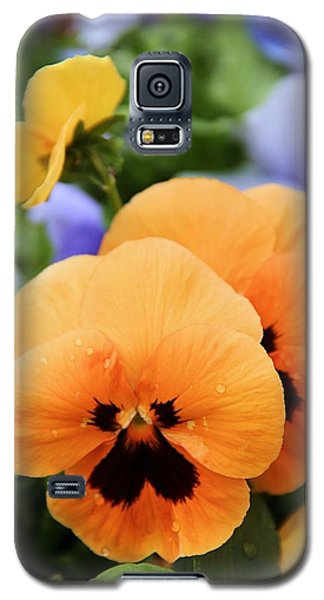Galaxy S5 Case featuring the photograph Orange Pansies by Elizabeth Budd