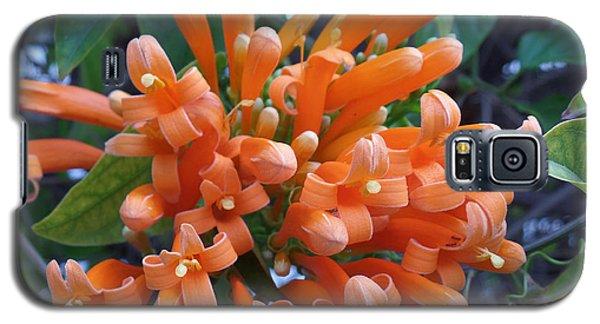 Orange Petals Galaxy S5 Case
