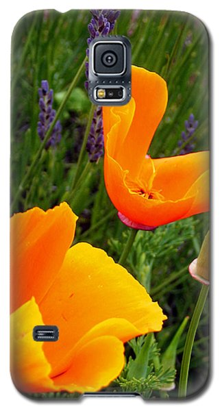 Orange Poppies With Lavender Galaxy S5 Case