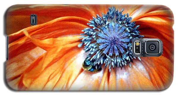 Orange Poppy Close-up Galaxy S5 Case