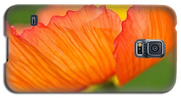 Orange Poppy Galaxy S5 Case by Joan Herwig