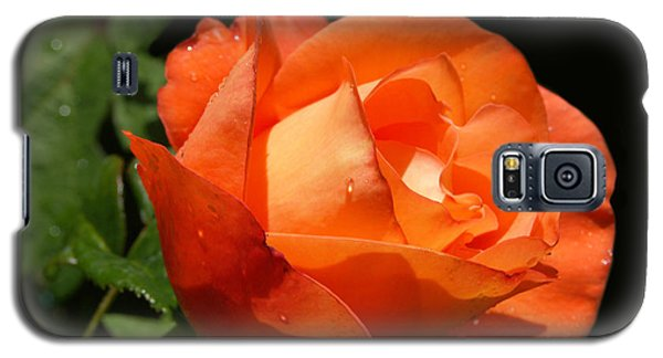 Galaxy S5 Case featuring the photograph Orange Rose by Haleh Mahbod