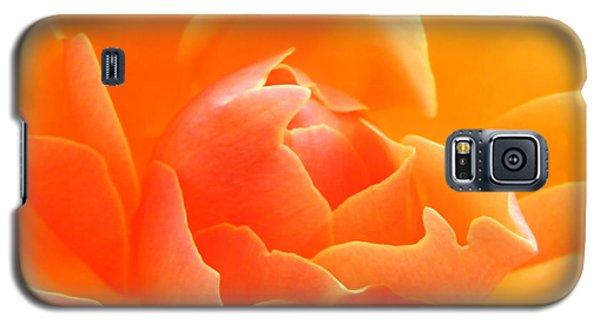 Galaxy S5 Case featuring the photograph Orange Sherbet by Deb Halloran