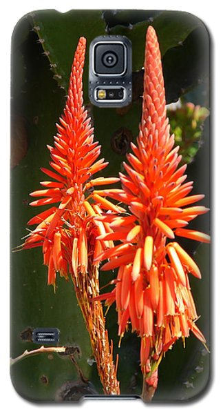 Galaxy S5 Case featuring the photograph Orange Succulent by Lew Davis