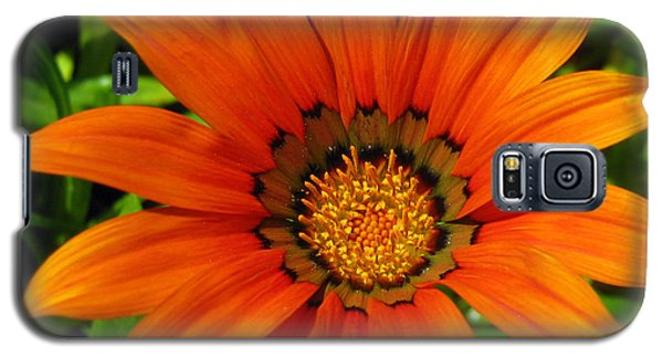 Galaxy S5 Case featuring the photograph Orange Sunshine by Janice Westerberg