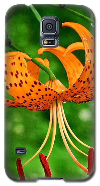 Orange Tiger Lily Galaxy S5 Case