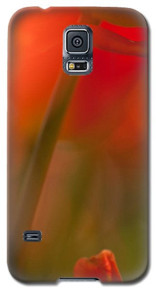 Orange Tulip Abstract Galaxy S5 Case