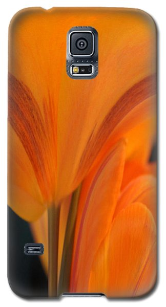 Orange Tulip Tower Galaxy S5 Case