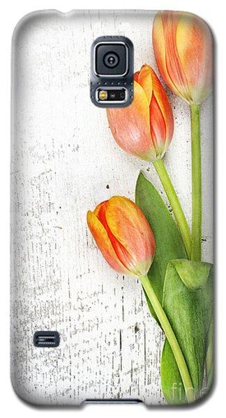 Orange Tulips Galaxy S5 Case by Stephanie Frey