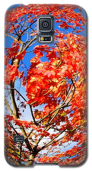 Orange Twirl -1 Galaxy S5 Case