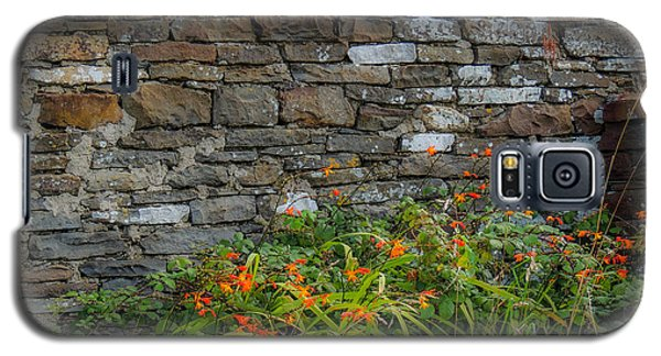 Orange Wildflowers Against Stone Wall Galaxy S5 Case