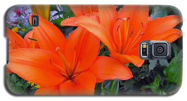 Orange You Are Pretty Galaxy S5 Case