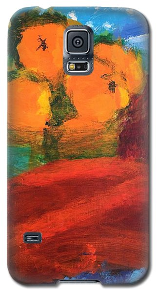 Oranges Galaxy S5 Case