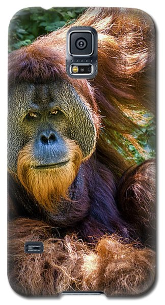 Galaxy S5 Case featuring the photograph Orangutan by Rob Amend