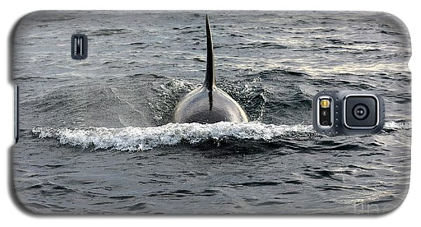 Galaxy S5 Case featuring the photograph Orca Approach by Gayle Swigart