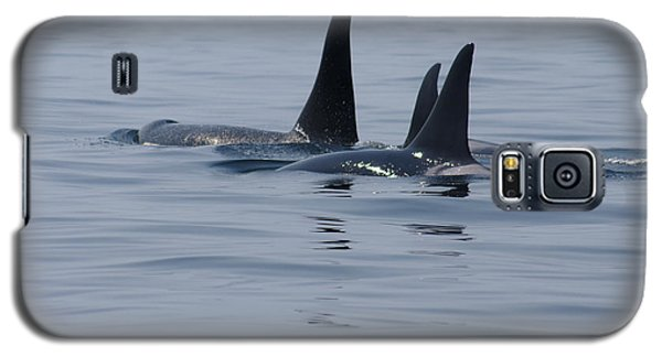 Orca Family Galaxy S5 Case by Marilyn Wilson